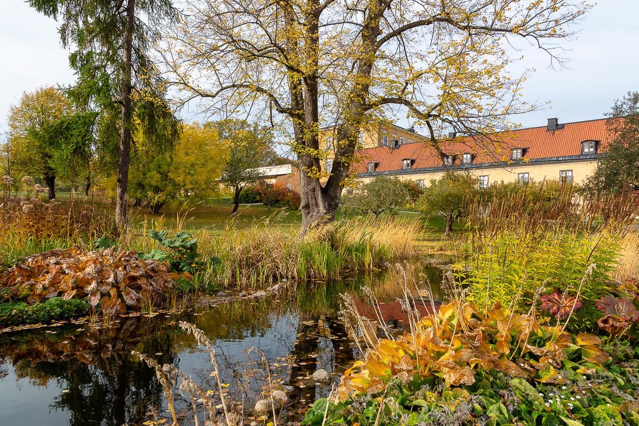 Höst vid Ulvsunda slott